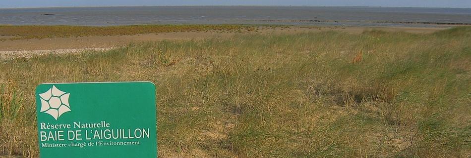 Baie de l'Aiguillon Vendée à voir en séjour au gite de la Gravée