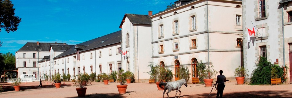 Haras La Roche sur Yon Vendée