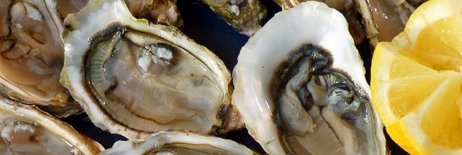 Huîtres de l'Atlantique à déguster pendant vos vacances en Vendée