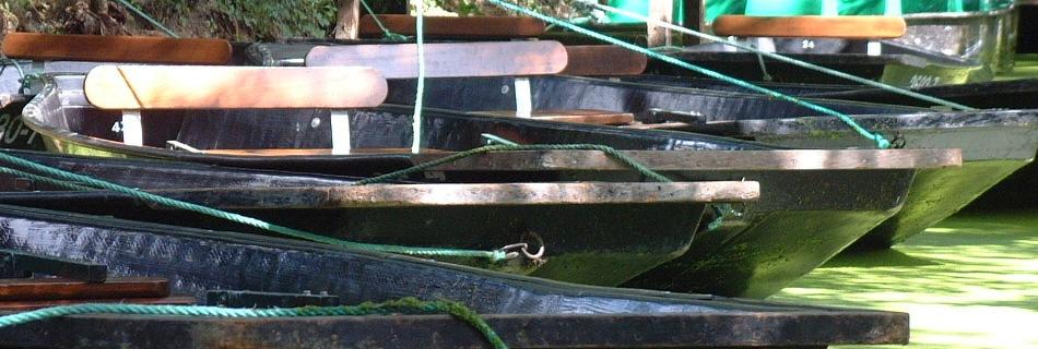 Boats in Marais Poitevin