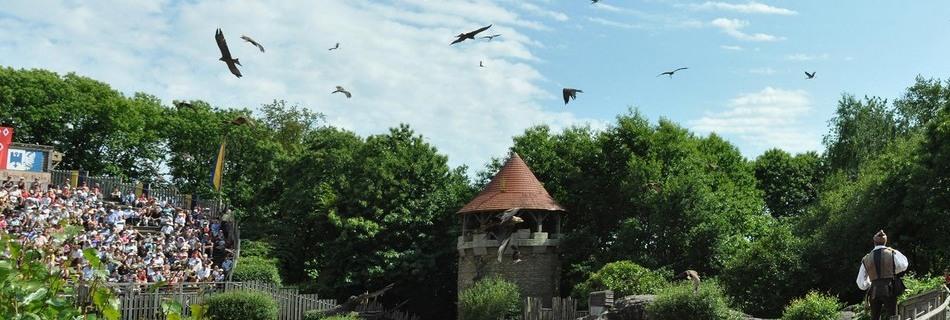Le-Bal-des-Oiseaux-du-Puy-du-Fou
