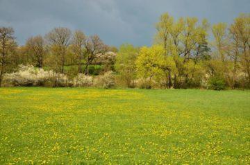La Vendée en avril par le gite de la Gravée Vendée