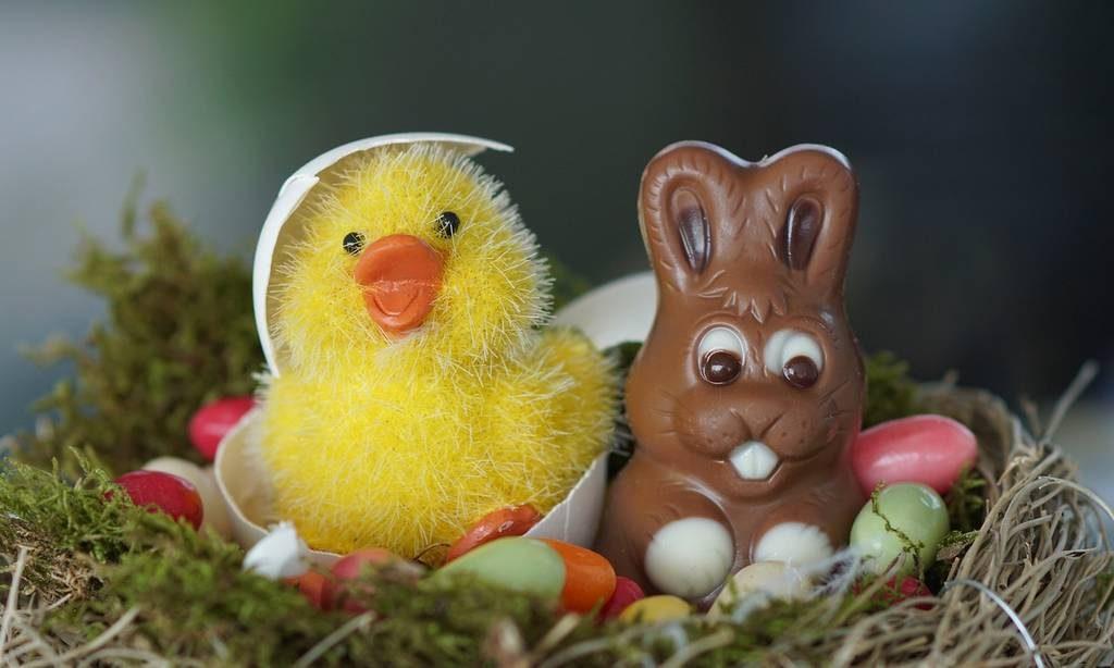 Pâques en Vendée - gite de la gravée Vendée