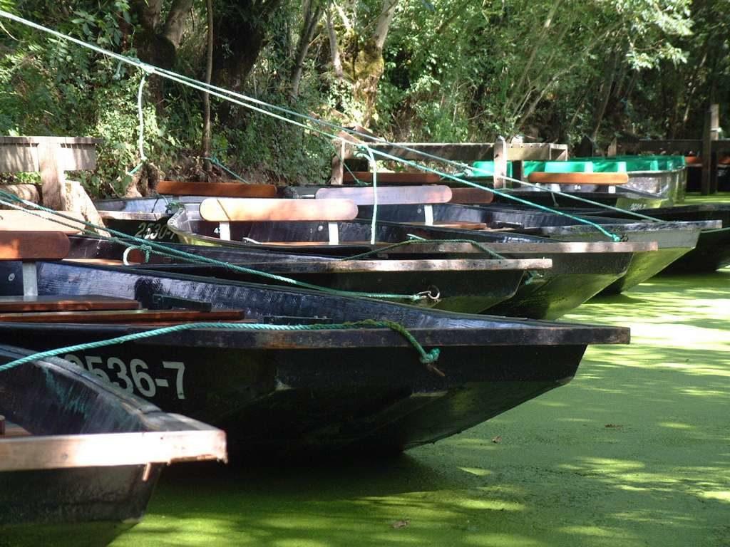 Vacances en Vendée, barques du Marais Poitevin