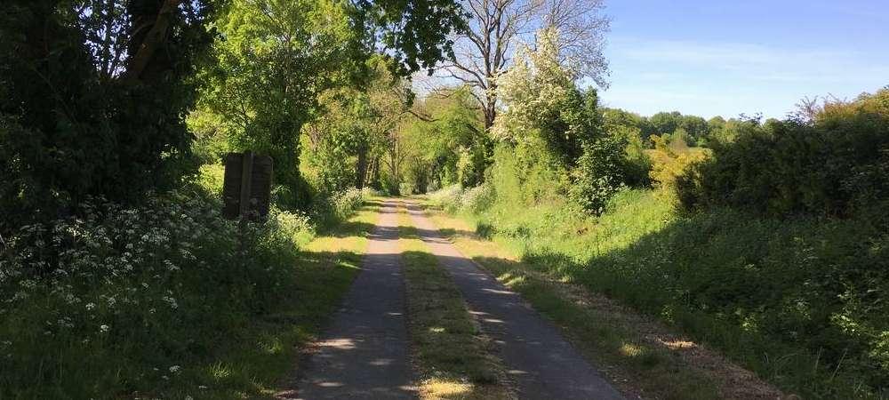 Des vacances en Vendée Saint Michel le Cloucq, la piste cyclable vers Merventr