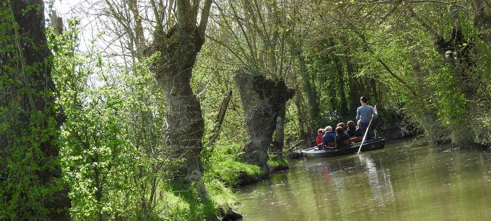 Vacances en Vendée Balade en barque dans le Marais Poitevin avec un guie